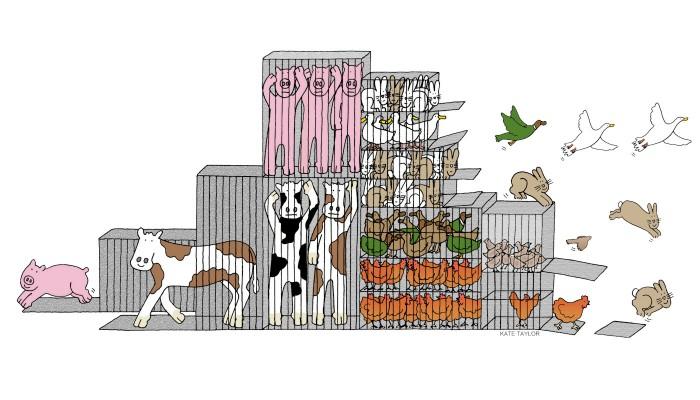 Grafik Tiere brechen aus Käfigen aus
