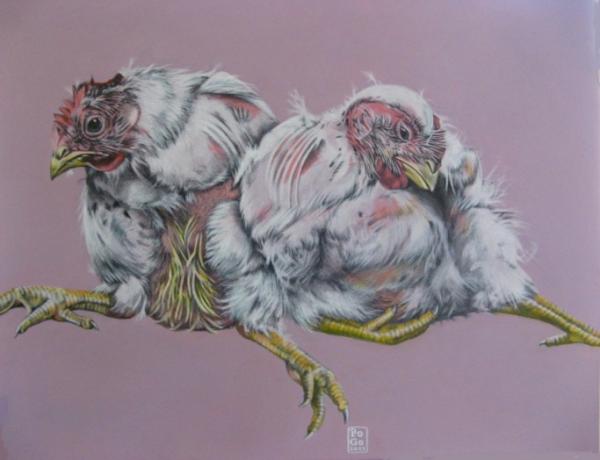 Zwei Mal die Hühnerbrust, bitte - aus dem Bilderbuch der Haustiere von POGO