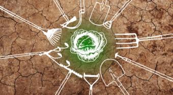 Tagungsband bio-vegane Landwirtschaft