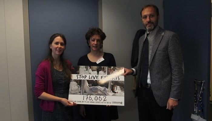 Unterschriften gegen Lebendexporte