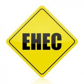 EHEC kommt aus Massentierhaltung