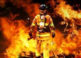 Feuer in einer Massentierhaltung
