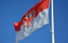 Flagge Land Brandenburg