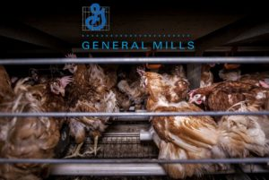 Int. Petition an General Mills