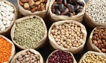 Fleischkonzern: Die Zukunft ist pflanzlich