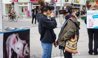 Virtual Reality: Eindrücke von unserer iAnimal-Tour