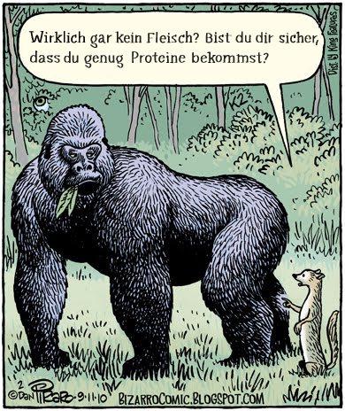 Comic Gorilla Proteine