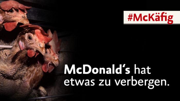 McDonald's lässt noch Käfigeier zu