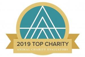 Auszeichnung Top Charity 2019