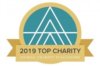 Auszeichnung: Top Charity 2019