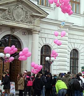Bild vom Auftakt des österreichischen Tierschutzprozesses