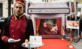 Erfolg: Marriott verzichtet auf Käfigeier