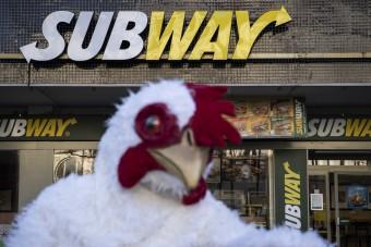 Hühner belagern Subway in Amsterdam