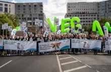 Veganer Sommer im Herzen Berlins