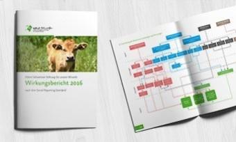 Transparenz- und Wirkungsbericht 2016